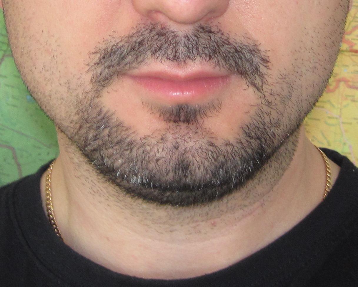 Все о выращивании бороды 14
