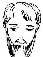 шотландка борода фото